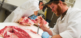 Student         cutting meat in lab
